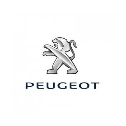 Stierače Peugeot 407 [D2] Máj 2004 - Feb.2011
